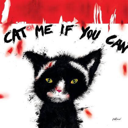Cat(ch)meifyoucanC1013