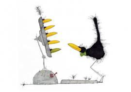 Black Birdy